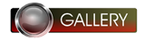 GallerybuttonUp